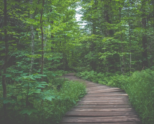 local hikes near portland maine