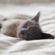 better sleep tips