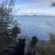 mackworth island state park