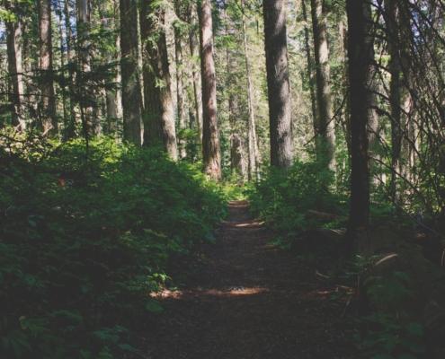 hiking around portland maine